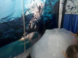 Alaskan Glacier Ice